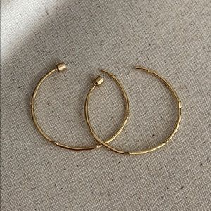 Gold Branch Hoops